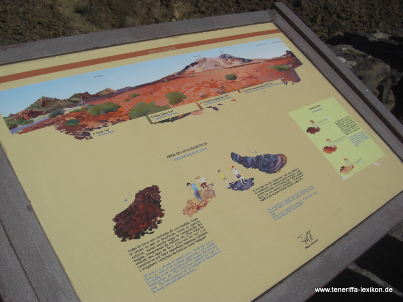 Teide_Nationalpark - Bild 13