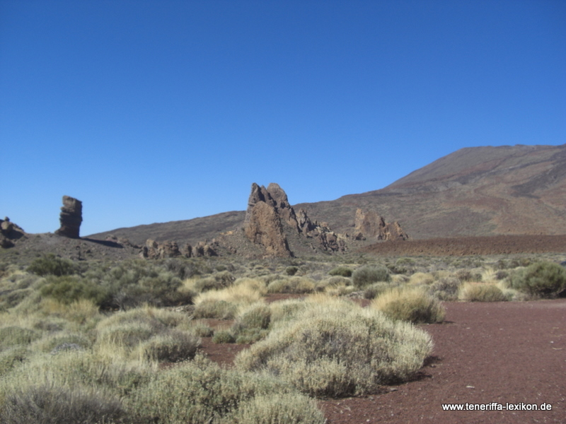Teide_Nationalpark - Bild 24