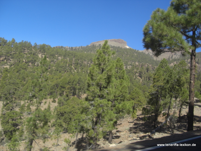 Teide_Nationalpark - Bild 3