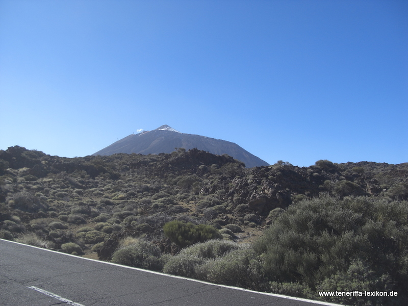 Teide_Nationalpark - Bild 76