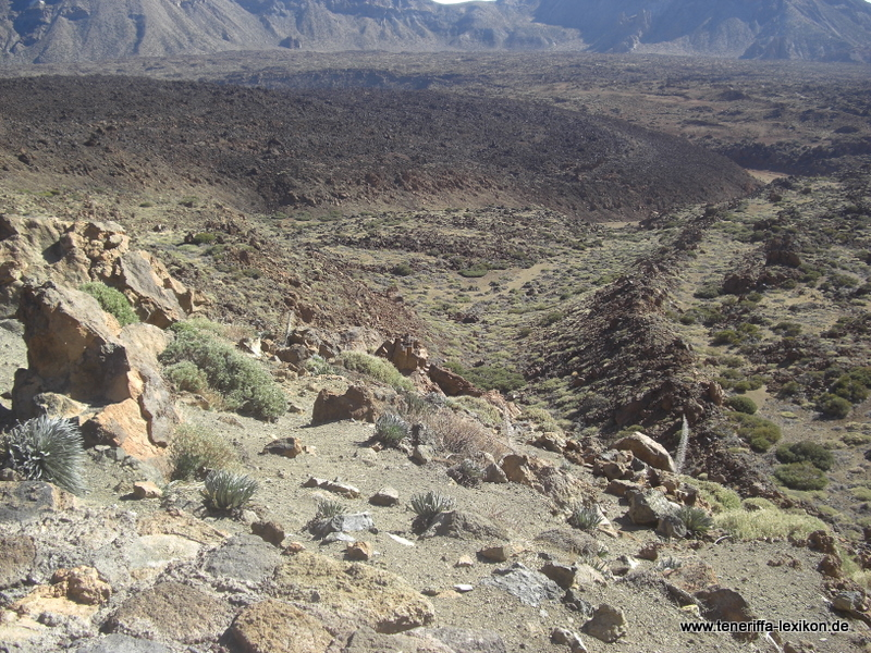 Teide_Nationalpark - Bild 84